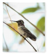 Watchful Hummingbird Fleece Blanket