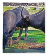 Watching 2 Water Buffalos 1 Water Buffalo Watching Me Fleece Blanket