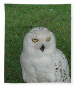 Watching Owl Fleece Blanket