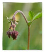 Water Avens Fleece Blanket