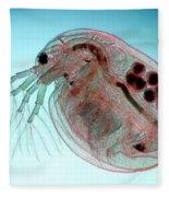 Water Flea Daphnia Magna Fleece Blanket