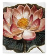 Water Lily, 1806 Fleece Blanket