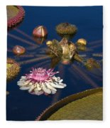 Water Lily And Platters Fleece Blanket