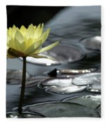 Water Lily And Silver Leaves Fleece Blanket