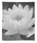 Water Lily - Burnin' Love 15 - Bw - Water Paper Fleece Blanket