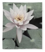 Water Lily In Soft Pink Fleece Blanket