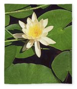 Water Lily I V Fleece Blanket