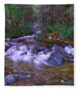 Water Never Tires Fleece Blanket