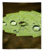 Water Strider Has A Drink At The Floating Leaf Cafe Fleece Blanket