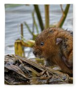 Water Vole Cleaning Fleece Blanket