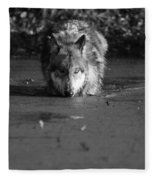 Water Wolf I Fleece Blanket