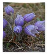 Watercolor Pasque Flowers Fleece Blanket
