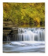 Waterfall Glen, Lemont, Il Fleece Blanket