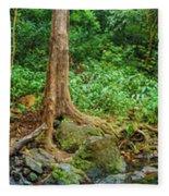 Waterfalls And Banyans Fleece Blanket