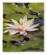 Waterlily On The Water Fleece Blanket