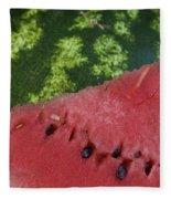 Watermelon Slice Fleece Blanket