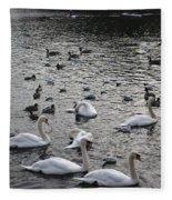 Waterpark Fleece Blanket