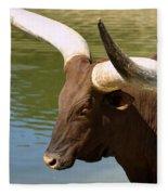 Watusi Bull Fleece Blanket