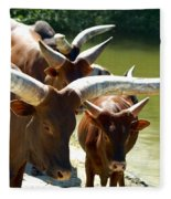 Watusi Cattle Fleece Blanket