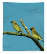 Wax Wings  Fleece Blanket