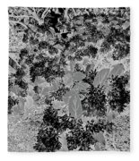 Waxleaf Privet Blooms On A Sunny Day In Black And White - Color Invert Fleece Blanket