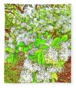 Waxleaf Privet Blooms On A Sunny Day Fleece Blanket