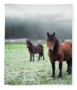 We Are Cold Fleece Blanket