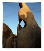 Weathered Rock Fleece Blanket