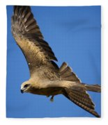 Wedgetail Eagle Flight Fleece Blanket