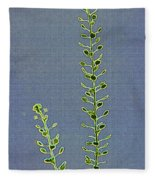 Weed Seeds Fleece Blanket