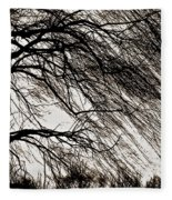 Weeping Willow Tree  Fleece Blanket