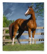 Welt Adel Fleece Blanket