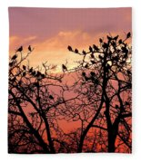 Wente Road Sunset Fleece Blanket