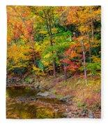West Virginia Paradise Fleece Blanket