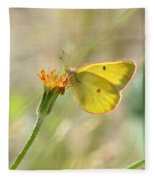 Wester Sulfur Butterfly Fleece Blanket