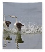 Western Grebe On Lake Fleece Blanket