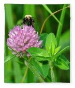 Western Honey Bee On Clover Flower Fleece Blanket