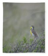Western Meadowlark Morning Fleece Blanket