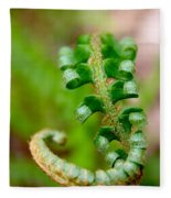 Western Swordfern Three Fleece Blanket