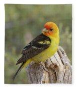 Western Tanager Fleece Blanket
