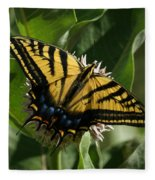 Western Tiger Swallowtail 2 Fleece Blanket