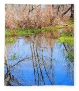 Wetlands Viewing Area In Chatfield State Park Fleece Blanket