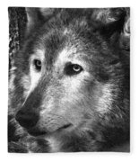 What Is A Wolf Thinking Fleece Blanket