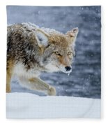 Where The Coyote Walks Fleece Blanket