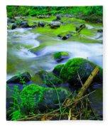Where The Golden Waters Flow Fleece Blanket