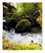 Whiskey Bend Trail  Fleece Blanket