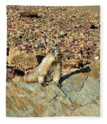 Whistle Pig Of The Rockies Fleece Blanket