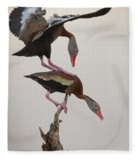 Whistling Duck Ballet  Fleece Blanket