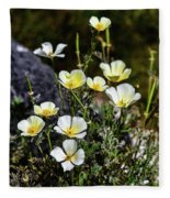 White And Yellow Poppies 1 Fleece Blanket