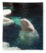 White Beluga Whale 3 Fleece Blanket